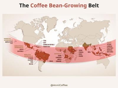 Bạn có từng nghe Vành Đai Cà Phê - The Bean Belt?