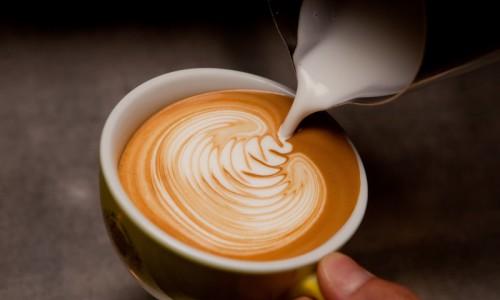 Làm cappuccino, latte art bằng bình french press