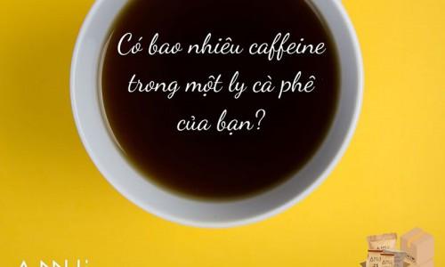 Có bao nhiêu caffeine trong 1 ly cà phê của bạn?