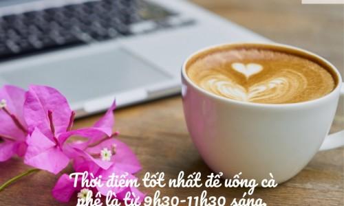 Thời điểm tốt nhất để uống cà phê là từ 9h30 đến 11h30 sáng