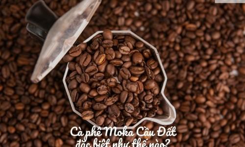 Cà phê Moka cầu đất đặc biệt như thế nào?