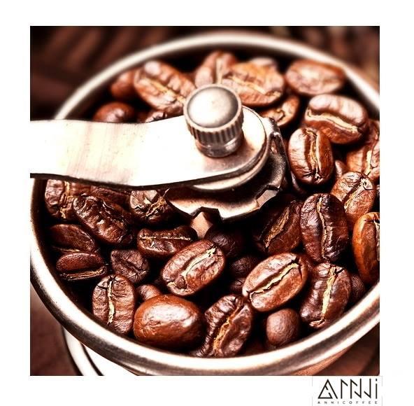 Tìm nguồn cà phê uy tín, chất lượng.