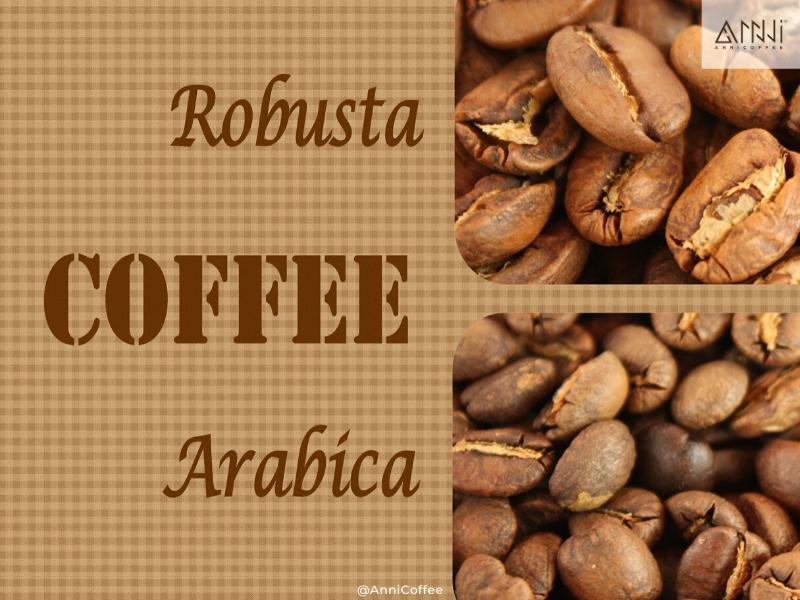 arabica và robusta